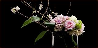 houston florist david brown flowers flower shop houston tx