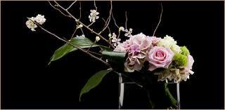 florist houston david brown flowers flower shop houston tx