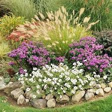 ornamental grass garden this look would be great for the