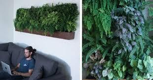 Watering Vertical Gardens - the top 10 best blogs on vertical garden