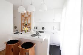 cuisine appartement parisien conception cuisine appartement photos de design d intérieur et