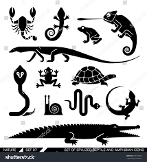 set various animal icons scorpions snakes stock vector 249126376