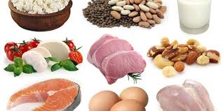 the health and weight loss benefits of a higher protein diet