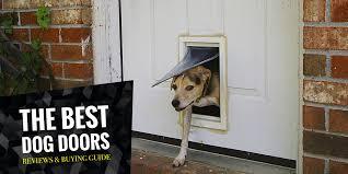 5 best dog doors in 2017 u2014 regular electronic sliding etc