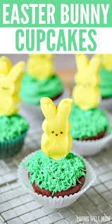 Decorating Easter Cupcakes With Peeps by Easter Bunny Cupcakes Easy And Fun