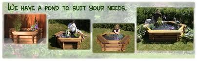 Backyard Pond Supplies by Above Ground Pond Kits Easy Setup