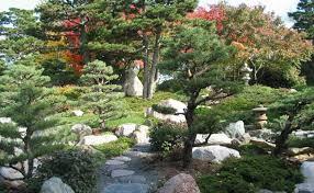 japanese garden charlotte partridge ordway japanese garden como park zoo and