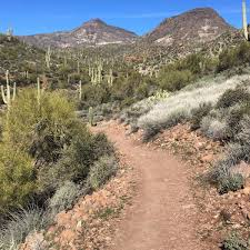 Map Of Greater Phoenix Area by Best Hikes In Phoenix