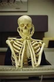 Skeleton Computer Meme - skeleton at computer memes memeshappen
