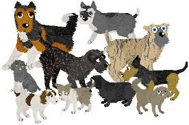 petz 5 australian shepherd dogz 5