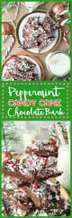 peppermint candy cane bark easy chocolate bark with candy canes