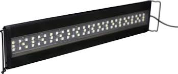 current usa orbit marine aquarium led light current usa lighting democraciaejustica
