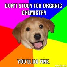 Chemistry Dog Meme - dog meme