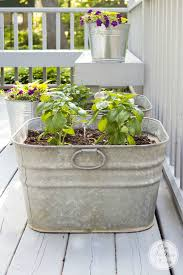 beautiful container herb gardens family food garden