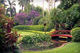 wedding venues st petersburg fl sunken gardens weddings simple weddings