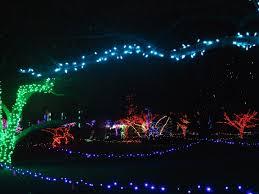 Detroit Zoo Night Lights by Wild Lights Marshmallows U0026 Margaritas