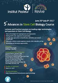 advances in stem cell biology institut pasteur