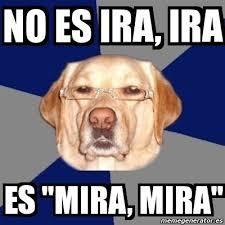 Ira Meme - meme perro racista no es ira ira es mira mira 7461432