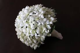 stephanotis flower a guide to the most popular wedding flowers by season wedding