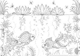 fish coloring page coloring club