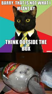 Business Cat Memes - the best of the business cat meme including original content