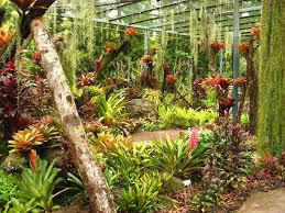 South Florida Landscaping Ideas Epic Florida Gardening Ideas On Interior Designing Home Ideas With
