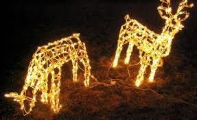 lighted reindeer lighted reindeer christmas