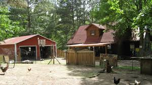 4247 tennessee mini farm for sale 2 homes cabin style fencing 4247 tennessee mini farm for sale 2 homes cabin style fencing shop coop