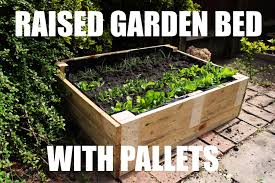 Raised Garden Beds From Pallets - how to make a raised garden bed for free using pallets youtube