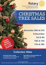 tree sales decor