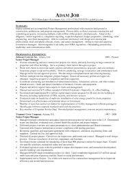 procurement manager resume sample construction manager resume free pdf download resume templates senior project manager resume