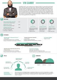 12 best free infographic resume templates images on pinterest