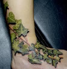 ivy leaves tattoo leaves and vines pinterest ivy leaf