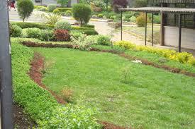 ornamental horticulture herbaceous plants gardening kenya
