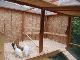 Backyard Chicken Coops Australia by The Chicken Coop Is Done U2026enough Northwest Edible Life