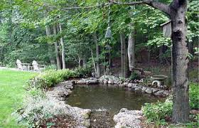 Backyard Pond Building Local Near Me Pond Builders We Do It All Low Cost Remodel