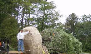 hf johnson tree farm cape cod