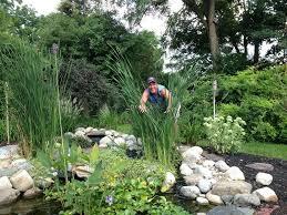 Family Garden Reading Pa Pond Maintenance U0026 Service Lebanon Pa Harrisburg Allentown