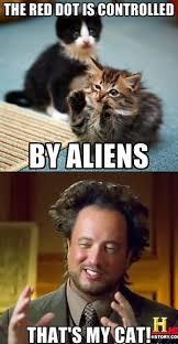 that s my cat ancient aliens know your meme