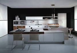 agreeable modular kitchen design ideas with l shape and witching
