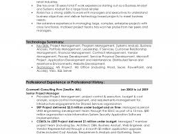 work summary for resume sensational design professional summary on resume 8 examples of download professional summary on resume