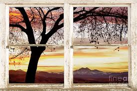 sunset tree silhouette abstract picture window view photograph by