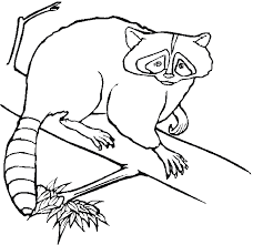 free forest animals coloring pages