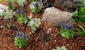 fall garden mulches types what is mulch and which should you use