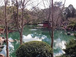 Auburn Botanical Garden Cherry Blossom Festival Auburn Botanic Gardens 2016 Sydney