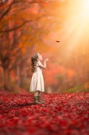 cute baby boy autumn leaves wallpapers 25 beautiful autumn ideas on pinterest cute instagram