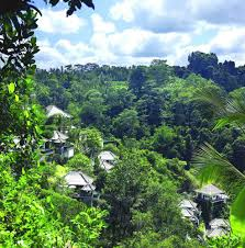 ubud hanging gardens hotel ubud hanging gardens indonesia reviews pictures map visual