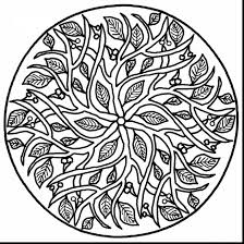 wonderful printable mandala coloring pages adults with free