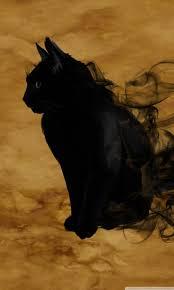 halloween wallpaper for iphone 5 halloween black cat hd desktop wallpaper widescreen high