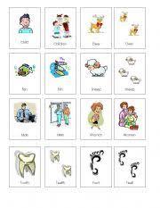 irregular plural nouns worksheet by kattia mendez